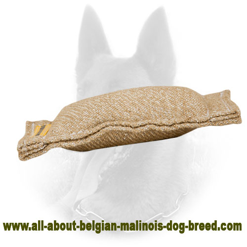 Jute Belgian Malinois Bite Tag with No Handle