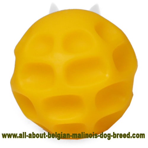 Yellow Belgian Malinois Ball for Interactive Training