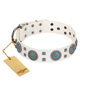 """Blue Sapphire"" Designer FDT Artisan White Leather Belgian Malinois Collar with Round Plates and Square Studs"