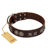"""Antique Style"" Designer Handmade FDT Artisan Brown Leather Belgian Malinois Collar"