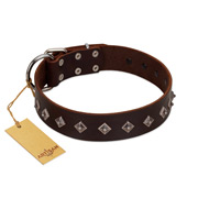 """Boundless Energy"" Premium Quality FDT Artisan Brown Designer Leather Belgian Malinois Collar with Small Pyramids"
