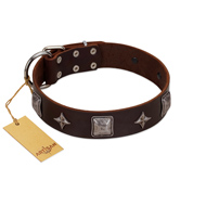 """Cold Star"" Designer FDT Artisan Brown Leather Belgian Malinois Collar with Silver-Like Adornments"