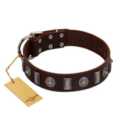 """Spiky Way"" FDT Artisan Brown Leather Belgian Malinois Collar with Silver-Like Decorations"