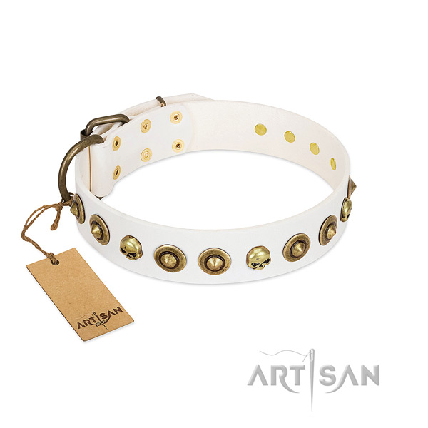 Full grain leather collar with stylish design embellishments for your doggie