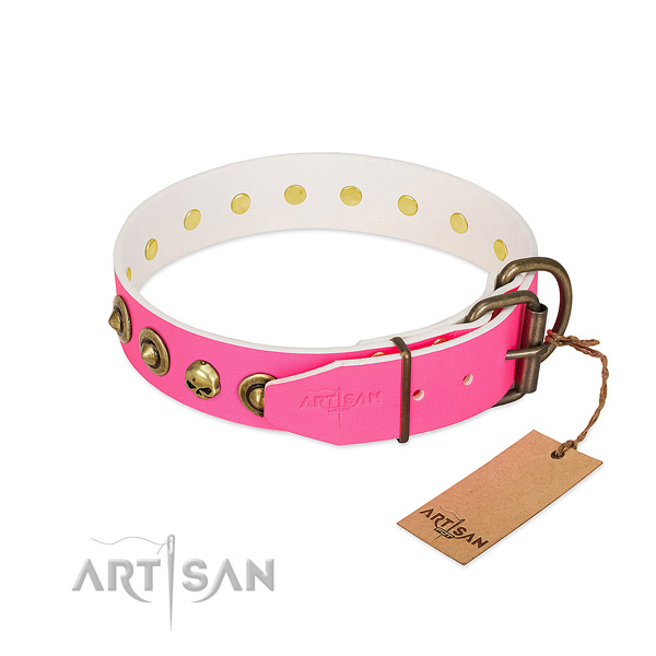 Leather collar with designer embellishments for your dog