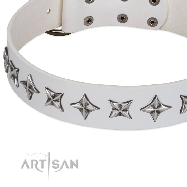Basic training embellished dog collar of strong full grain genuine leather