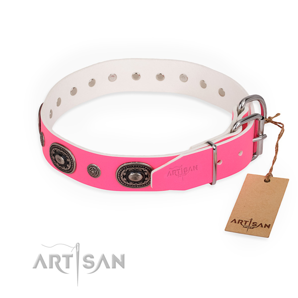 Fancy walking easy wearing dog collar with reliable fittings