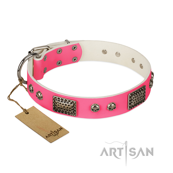 Easy wearing full grain genuine leather dog collar for walking your dog