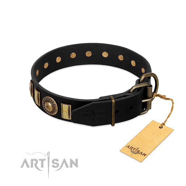 Top notch full grain natural leather dog collar with embellishments
