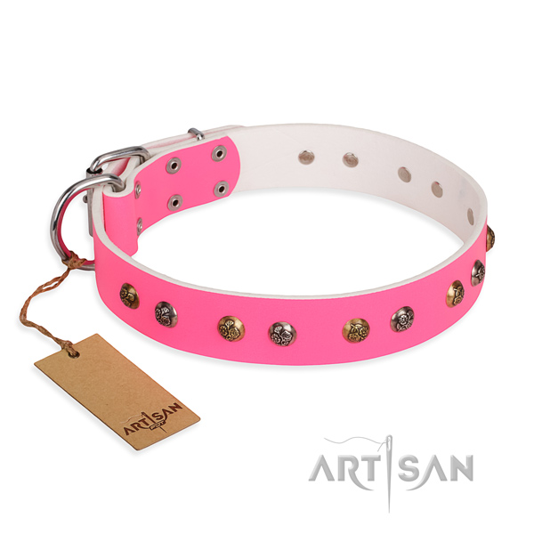 Daily walking studded dog collar with durable traditional buckle