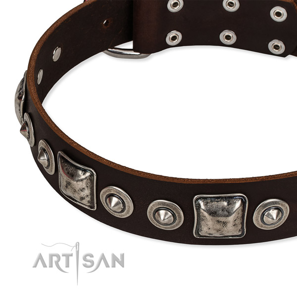 Full grain natural leather dog collar made of high quality material with studs