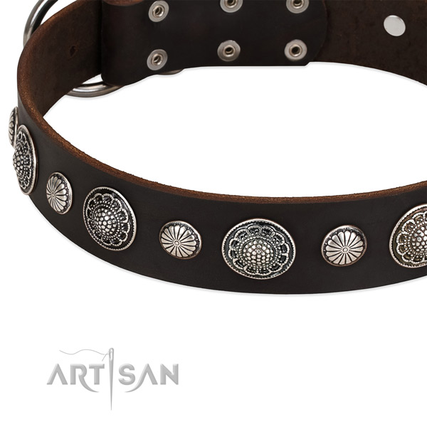 Full grain natural leather collar with reliable D-ring for your impressive doggie