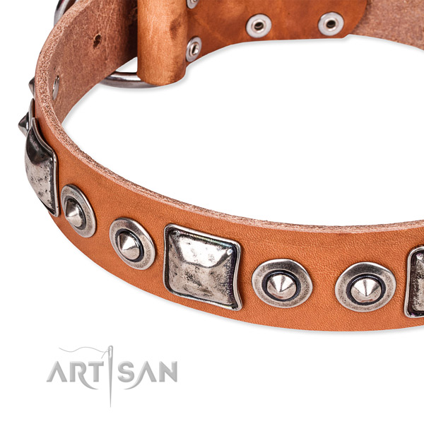 Durable full grain genuine leather dog collar created for your attractive pet