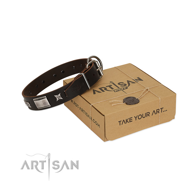 Easy wearing collar of full grain natural leather for your impressive pet