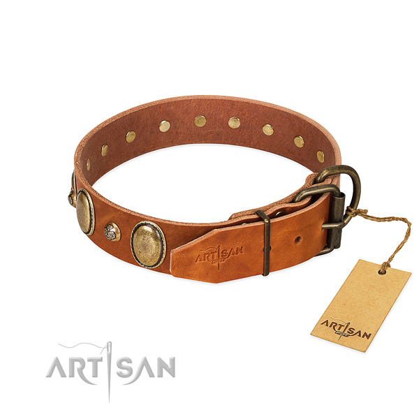 Remarkable natural leather dog collar with corrosion proof buckle