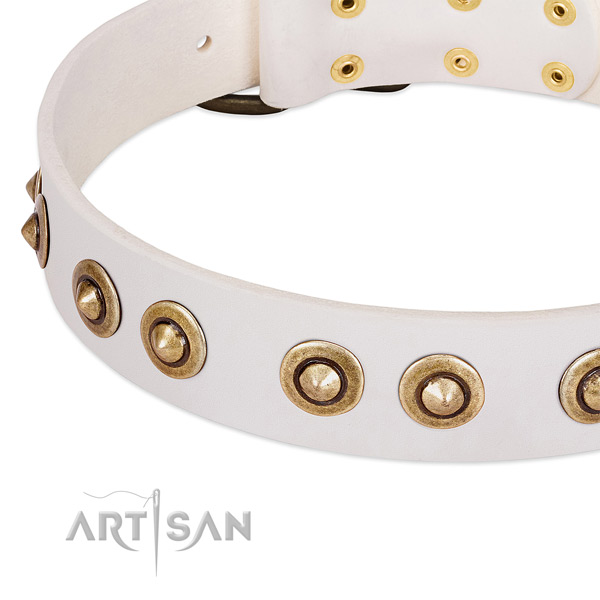 Rust resistant embellishments on full grain genuine leather dog collar for your canine