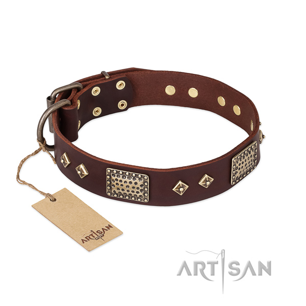 Embellished genuine leather dog collar for daily use
