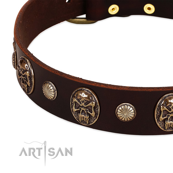 Genuine leather dog collar with studs for walking
