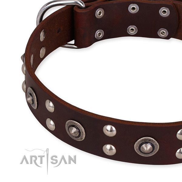 Genuine leather collar with strong traditional buckle for your attractive four-legged friend