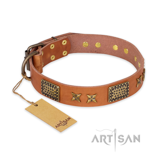 Decorated full grain natural leather dog collar with reliable buckle