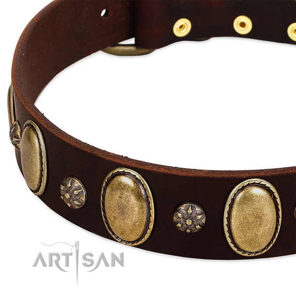 Stylish walking soft full grain natural leather dog collar
