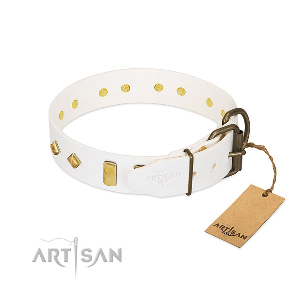 High quality full grain leather dog collar with strong fittings