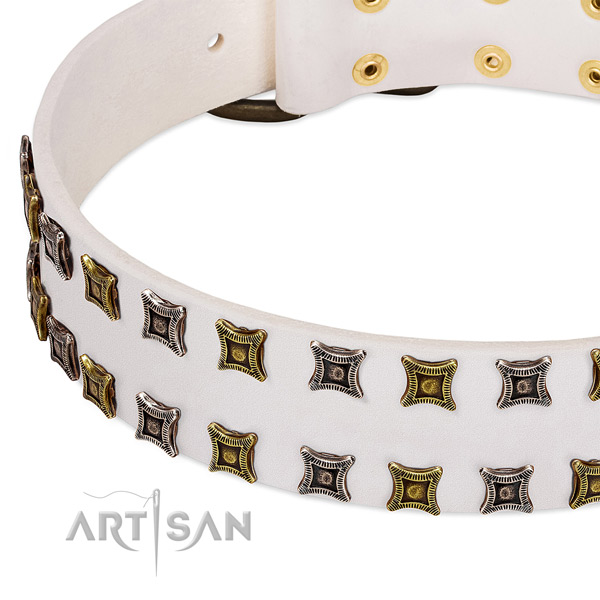 Full grain genuine leather dog collar with adornments for your impressive canine