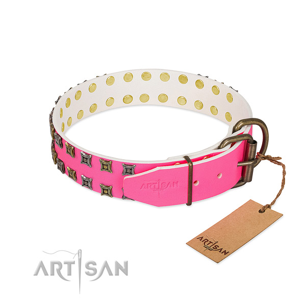 Full grain genuine leather collar with amazing studs for your four-legged friend