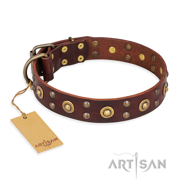 Amazing full grain genuine leather dog collar with rust-proof traditional buckle