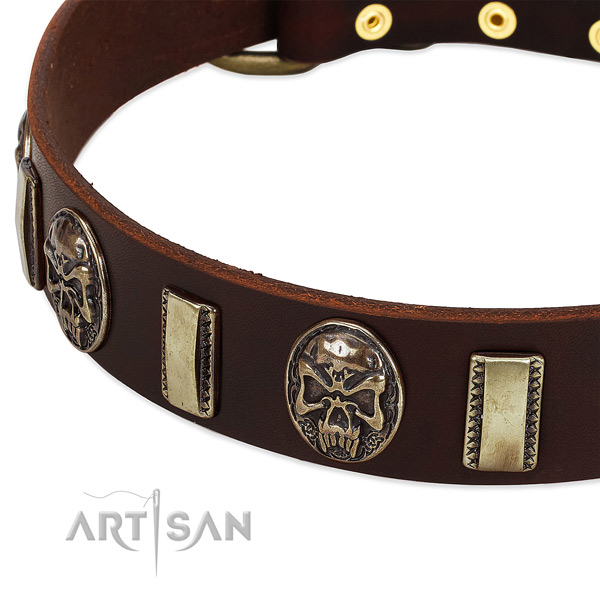 Rust-proof traditional buckle on full grain natural leather dog collar for your canine