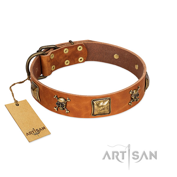 Exquisite full grain natural leather dog collar with reliable embellishments