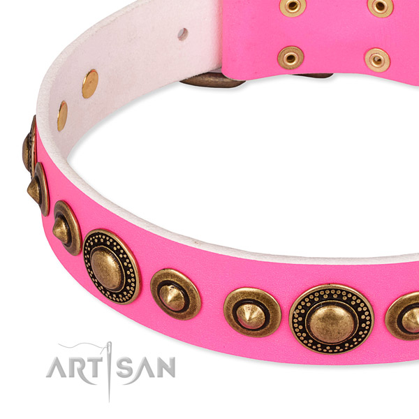 High quality full grain natural leather dog collar crafted for your attractive canine