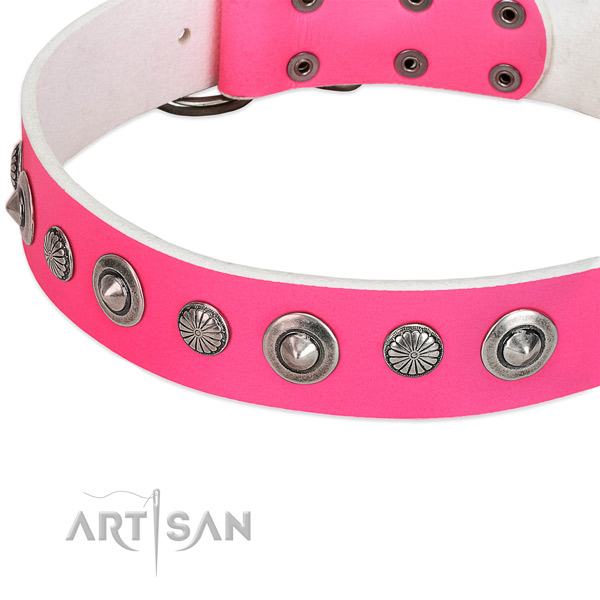 Genuine leather collar with reliable fittings for your stylish four-legged friend