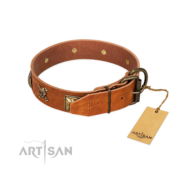 Remarkable leather dog collar with durable studs