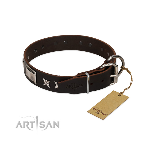 Unique collar of leather for your beautiful canine