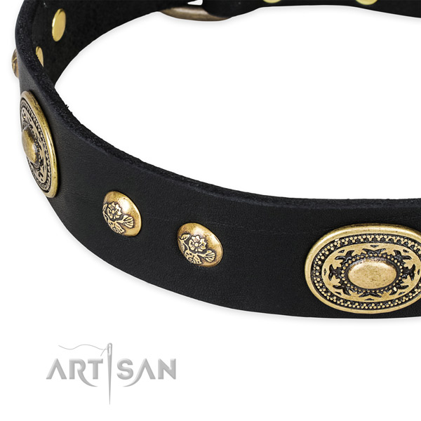 Exquisite leather collar for your handsome canine