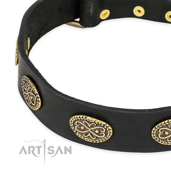 Studded full grain natural leather collar for your beautiful pet