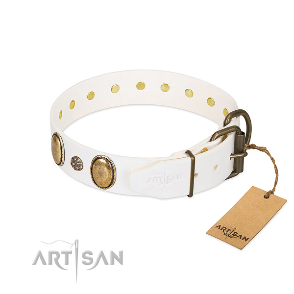 Daily walking flexible leather dog collar with studs
