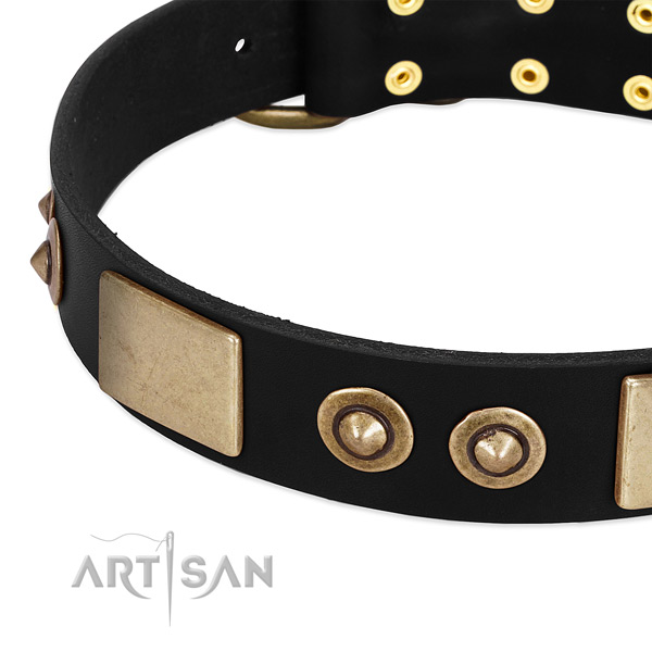 Strong embellishments on full grain genuine leather dog collar for your canine