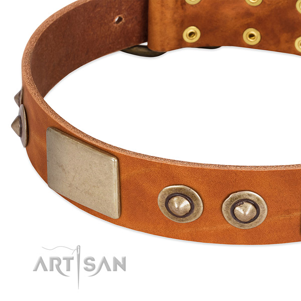 Rust-proof adornments on full grain genuine leather dog collar for your canine