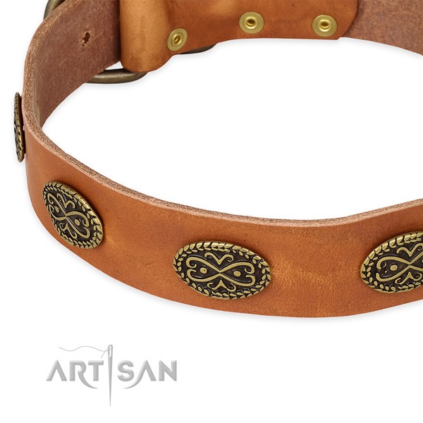 Amazing genuine leather collar for your stylish canine