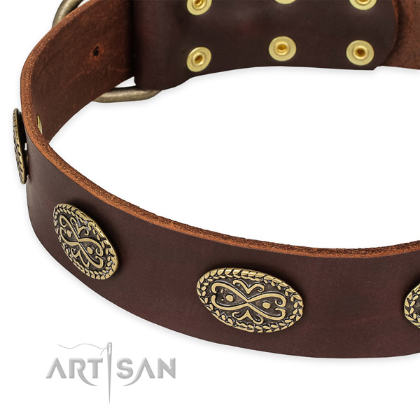 Top notch full grain genuine leather collar for your lovely doggie