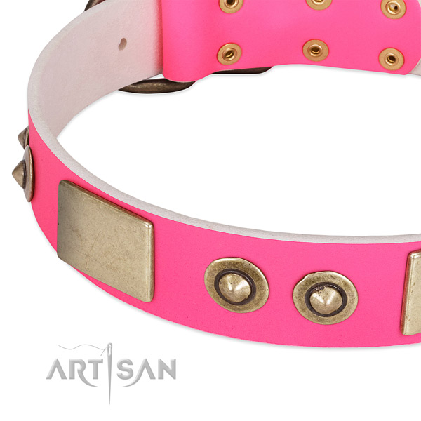 Corrosion proof studs on full grain natural leather dog collar for your pet