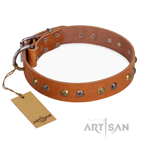 Everyday use easy to adjust dog collar with corrosion resistant traditional buckle