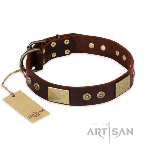Awesome leather dog collar for stylish walking