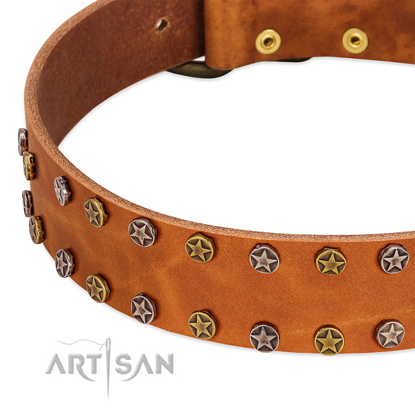 Everyday walking full grain genuine leather dog collar with extraordinary decorations