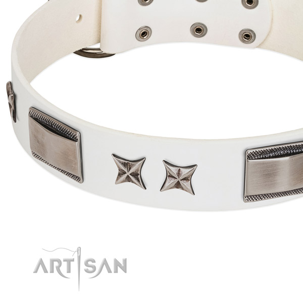 Soft full grain leather dog collar with corrosion resistant fittings