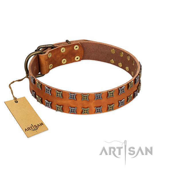 Durable full grain genuine leather dog collar with embellishments for your four-legged friend