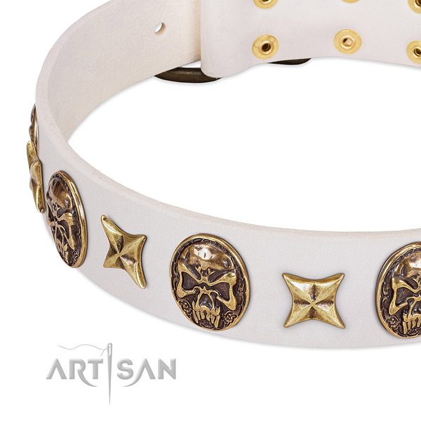 Decorated dog collar handcrafted for your impressive pet