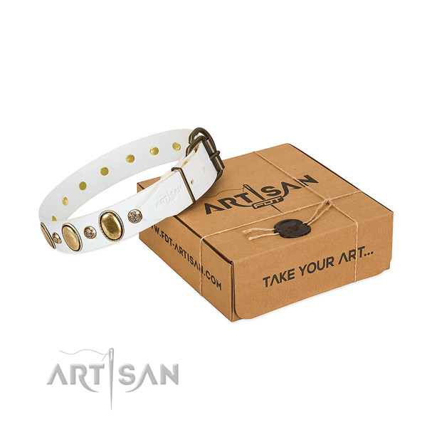 Unusual full grain natural leather dog collar with reliable hardware